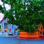 วัดพระงาม (Wat Phra Ngam) ตำบลพระปฐมเจดีย์ อำเภอเมือง จังหวัดนครปฐม