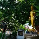 วัดเวฬุราชิณ (Wat Weru Rachin) ถนนเทอดไท แขวงบางยี่เรือ เขตธนบุรี กรุงเทพมหานคร