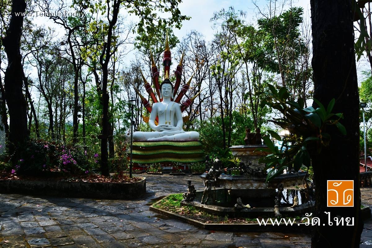 วัดอนาลโยทิพยาราม (Wat Analayo Thipayaram) ตั้งอยู่บนดอยบุษราคัม หมู่บ้านสันป่าบง หมู่ที่ 6 ตำบลสันป่าม่วง อำเภอเมืองพะเยา จังหวัดพะเยา 56000