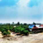 วัดป่าห้วยตุ้ม [Wat Pa Huai Tum] (วัดศรีเมืองชุม) ตำบลลอ อำเภอจุน จังหวัดพะเยา