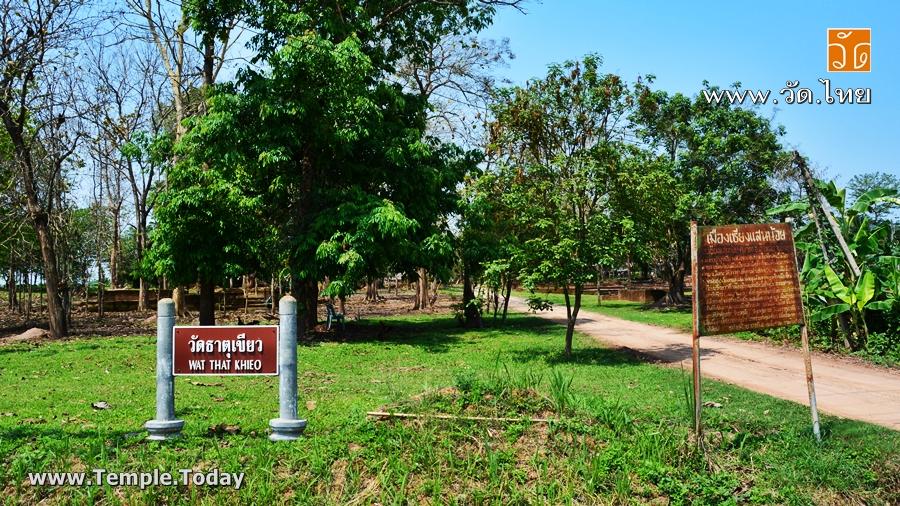 วัดธาตุเขียว ( วัดร้าง โบราณสถาน ) Wat That Khieo บ้านเชียงแสนน้อย ตำบลเวียง อำเภอเชียงแสน จังหวัดเชียงราย 57150