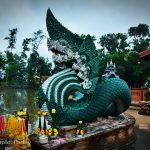 วัดป่าคลอง11 (Wat Pa Klong11) ตำบลบึงกาสาม อำเภอหนองเสือ จังหวัดปทุมธานี