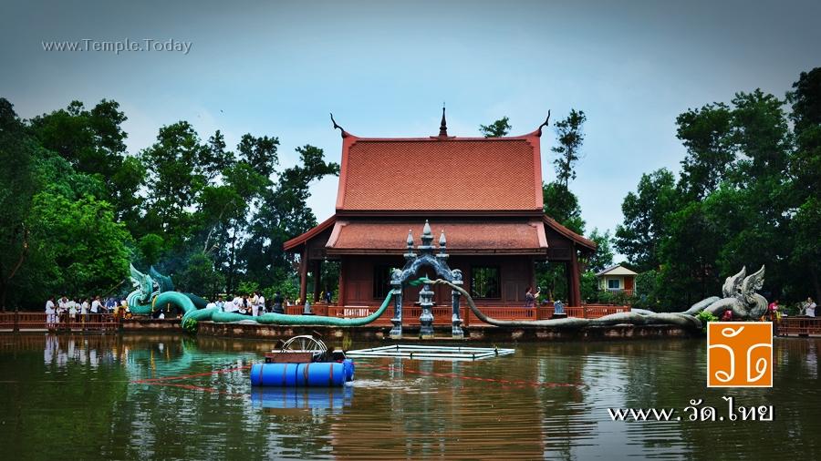 วัดป่าคลอง11 (Wat Pa Klong11) ตำบลบึงกาสาม อำเภอหนองเสือ จังหวัดปทุมธานี 12170