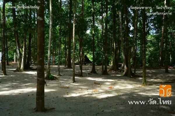 วัดสุมณฑาธาร (วัดป่าเรียน) ตำบลตลิ่งชัน อำเภอท่าศาลา จังหวัดนครศรีธรรมราช 80160